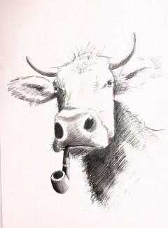 pipe smoking cow