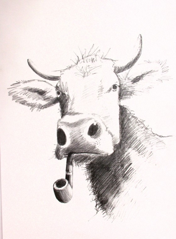pipe smoking cow